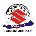 Borongics KFT.